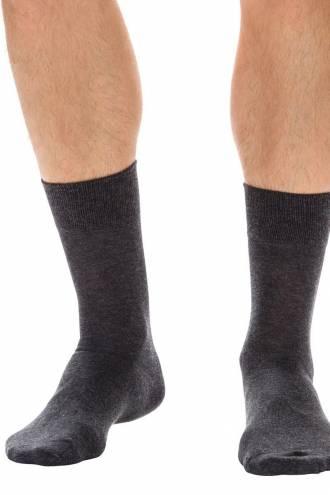 Хлопковые мужские носки (2 шт) DIM